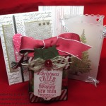 Some of the December Virtual Online Stamp Club Class Projects!