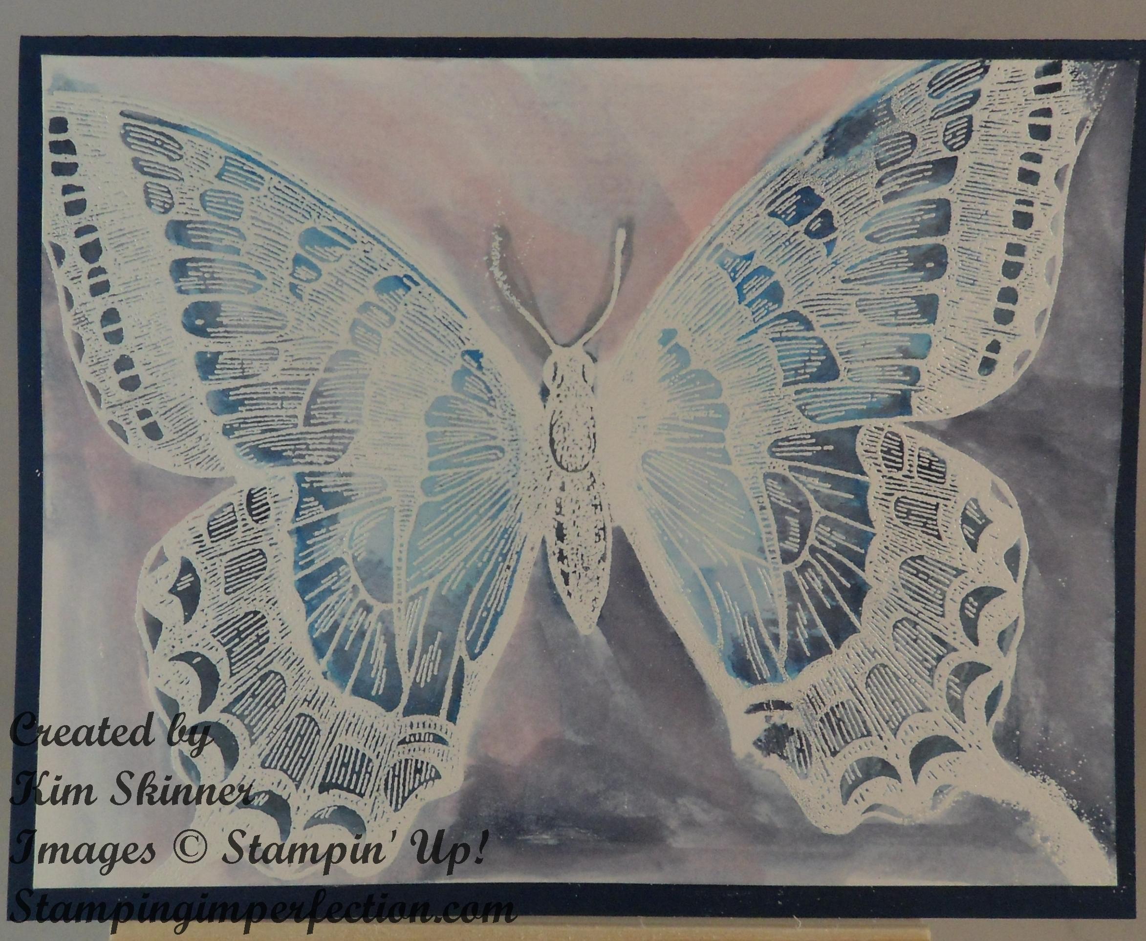 blueswallowtail