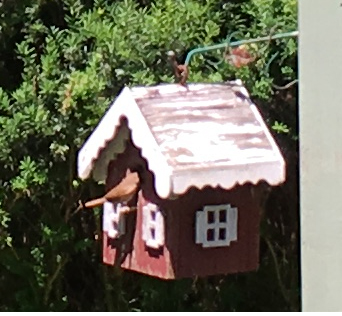 Bird house stamping imperfection