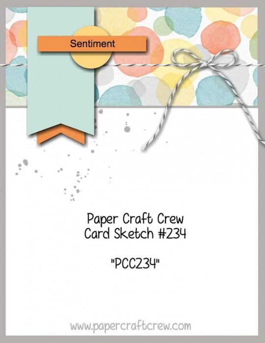 pcccs234