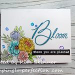 Bloom Where Your Planted Single Layer Card