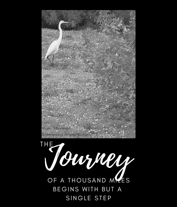 Kim Skinner Journey