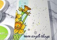 Single Layer CAS color challenge card