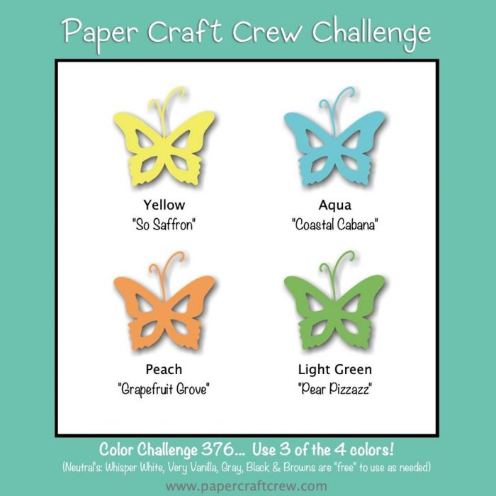 Single Layer CAS color challenge card
