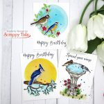 3 Cards, 1 Stamp Set: Scrappy Tails Crafts Spring Birds Cards