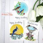 3 Cards, 1 Stamp Set: Scrappy Tails Crafts Spring Birds Cards